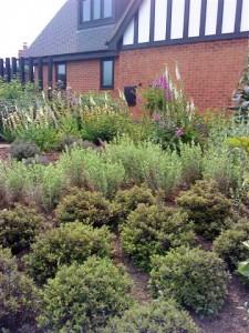 Outstanding Garden Designs