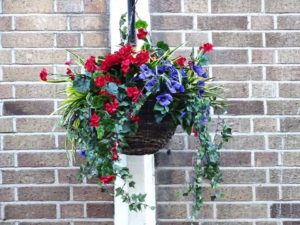 hanging-basket-of-flowers