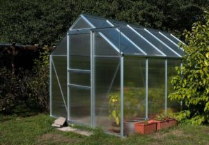 Small glass green house