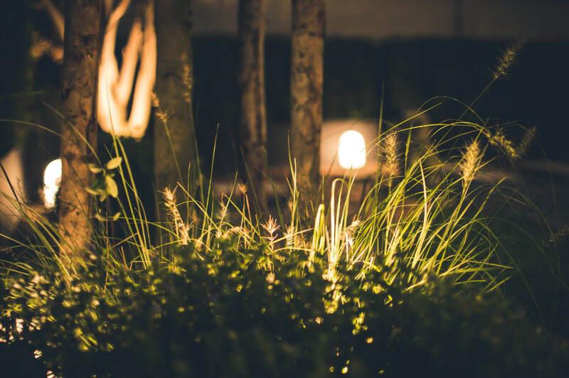garden-light